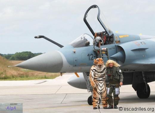 Tigre et blonde
