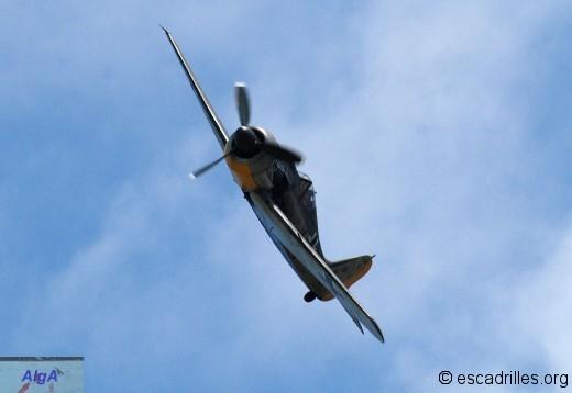 FW190 2010