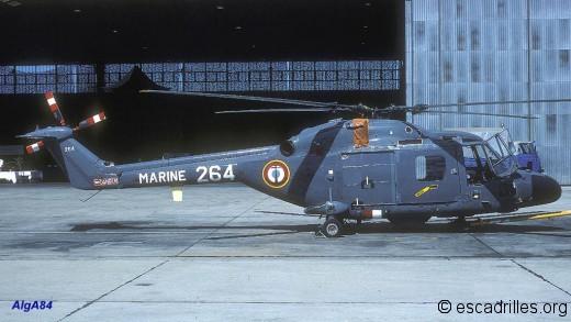 Lynx 1984 31F