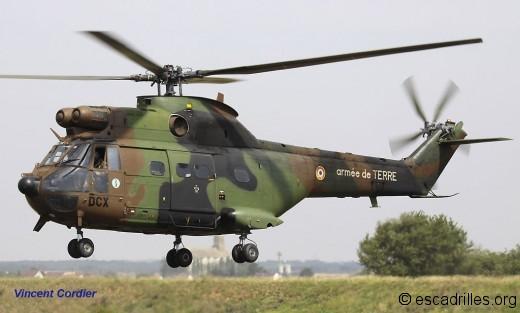 Puma DCX