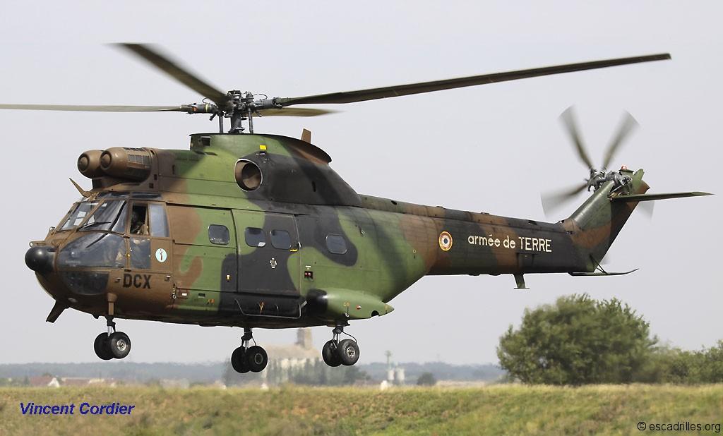 puma militaire