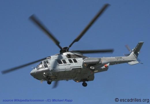 Cougar 32F Michael-Rapp
