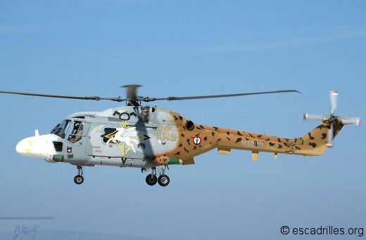 Lynx 2006 31F-265