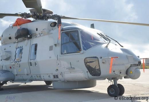 Caiman 31F avant-droit
