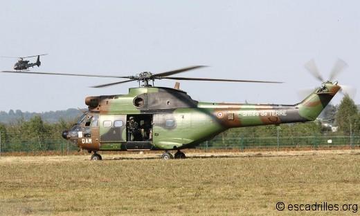 Puma 2012 DAP