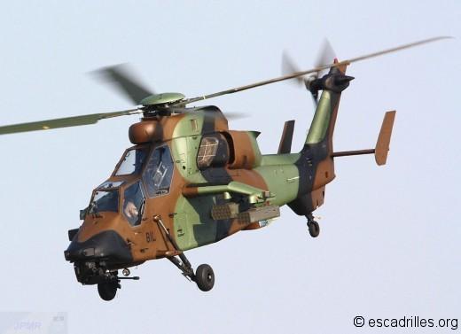 Tigre 2012 BIL
