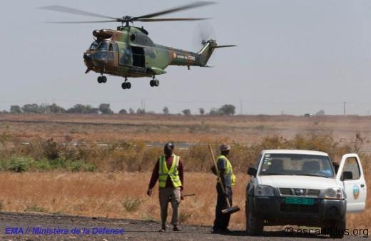 Puma sur l'aéroport de Bamako
