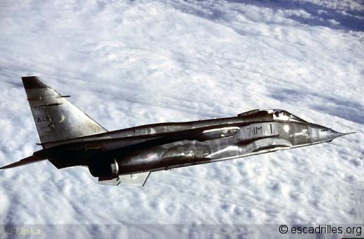 Jaguar du 3/7 en lisse à moyenne altitude (1990)