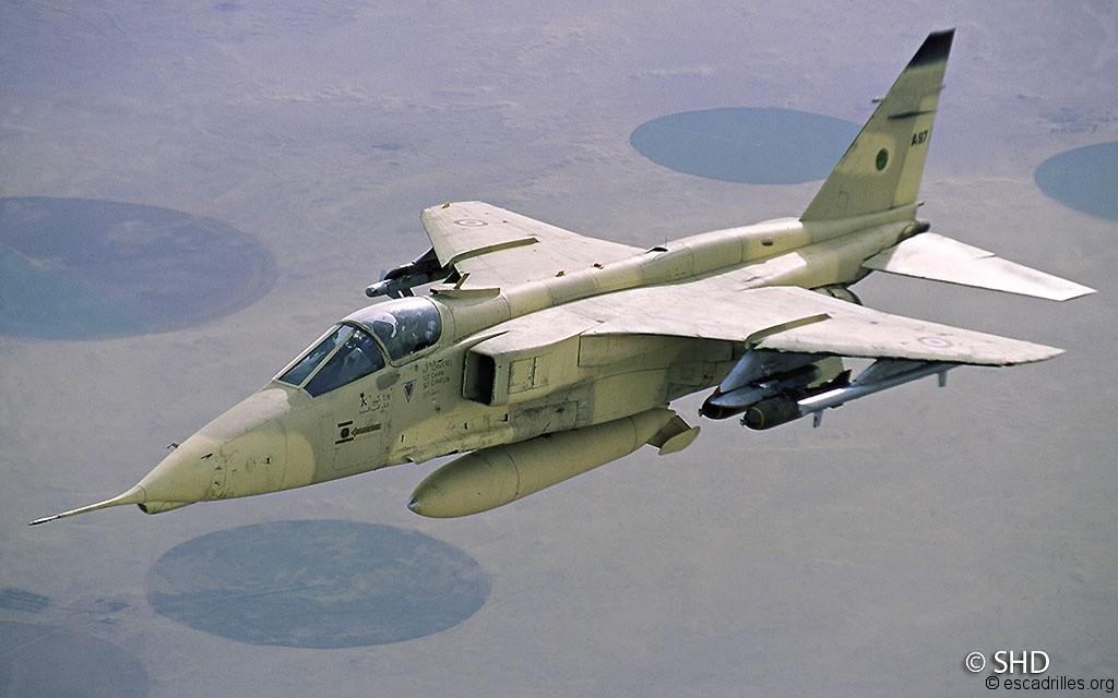 le jaguar dans l arm 233 e de l air escadrilles