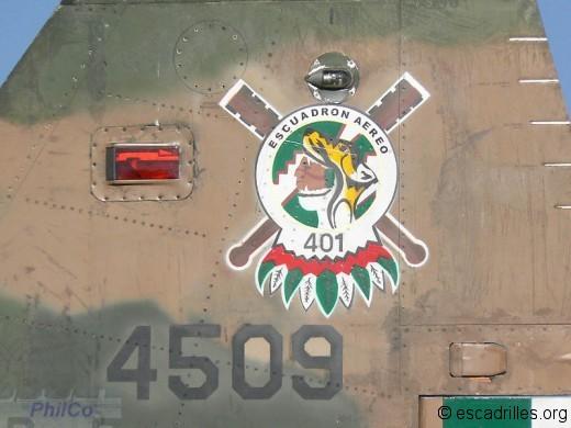 Insigne Escuadron 401
