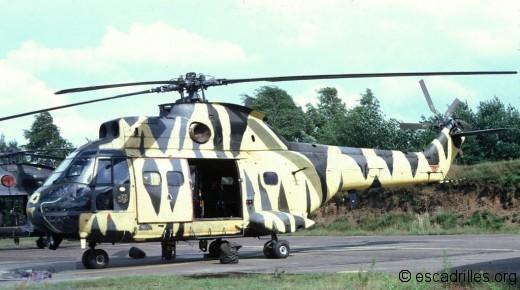 Puma 1979 230 Sq