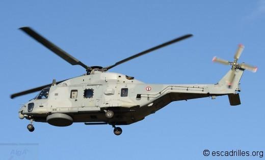 Caiman 10S-6