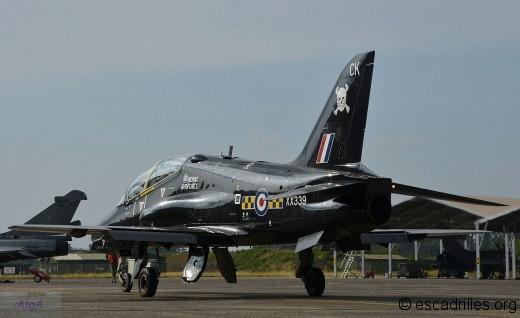Hawk_25014_XX339