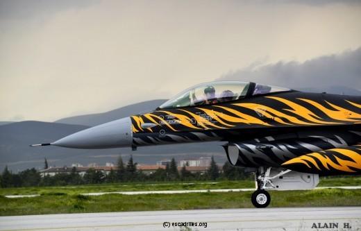 F16_192-Tiger_ah
