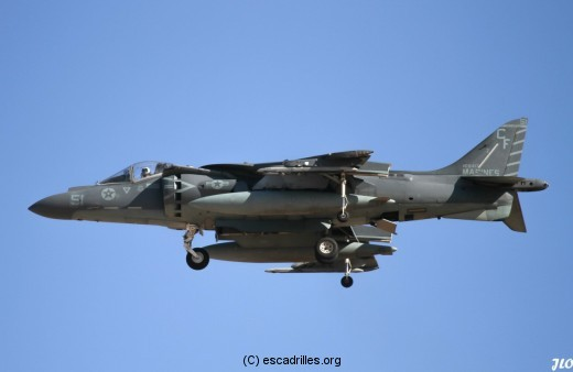 Harrier_CF51_