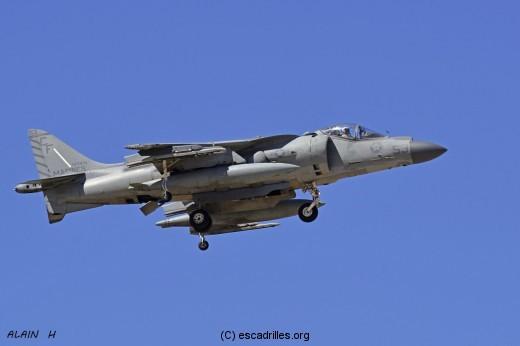 Harrier_CF53_ah-