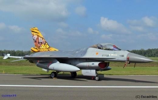 Un F-16 local, le Tigre