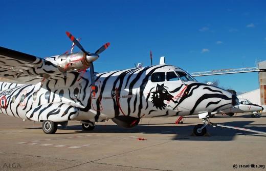 Ce loup tigré fit les délices des spectateurs à compter du Tiger Meet de 2008