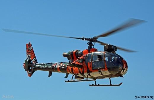 Gazelle transformée en tigre, par les aviateurs d'Etain