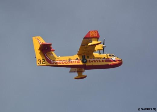 Pélican en vol près d'un feu, le 14 juillet 2016, déco anniversaire