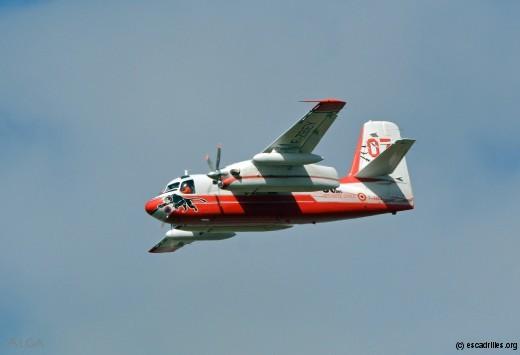 Le Turbo-Firecat, très bel avion, peut-être bien parti pour durer